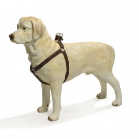 IPTS-suspenders for dogs SOFT 20*50-70 brown