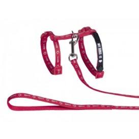 "Nobby cat collar + harness  ""MY BOSS"""
