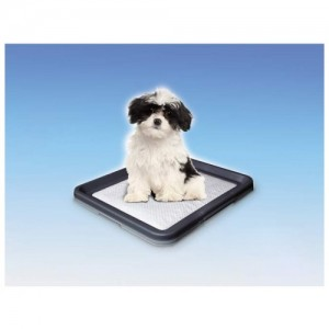 Nobby Doggy Trainer S 48x41x3,5cm