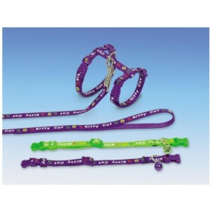 NObby SET KITTY CAT purple