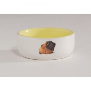 IPTS bowl for rodents yellow 10cm