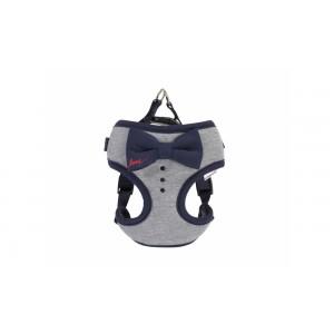 Camon blue harness 48/58cm