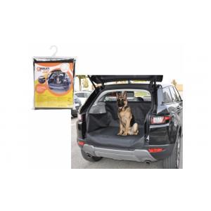 Camon car protection