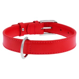 CO collar GLA 12mm21-29cm red