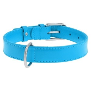 CO collar GLA 25mm/38-49cm blue