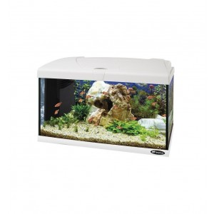 FP. aquarium 60L LED black