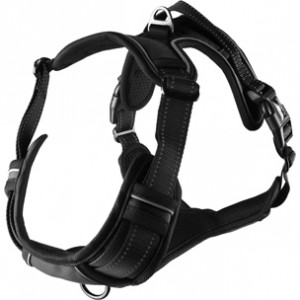 Fla.harness BALOU black 50-65cm/25mm