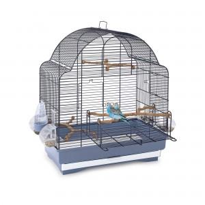 Imac bird cage ELISA BLUE