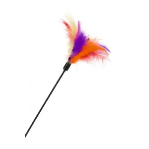 IPTS Cat Feather Tockler
