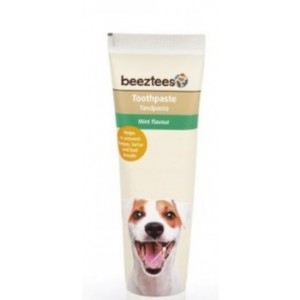 IPTS TOOTHPASTE with mint 100g
