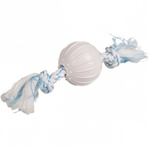 Fla.toy for dogs DENTA ball