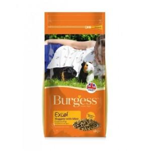 Burgess EXCEL mint guinea pig 10kg