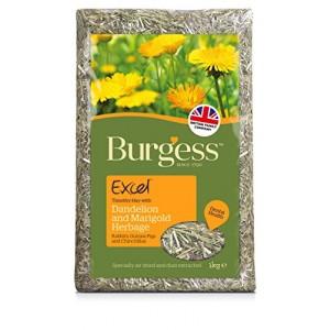 Burgess saialille ja võilillega HEIN 1kg