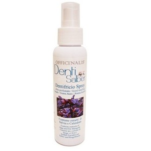 DG DENTAL SPRAY hambapuhastus 100ml
