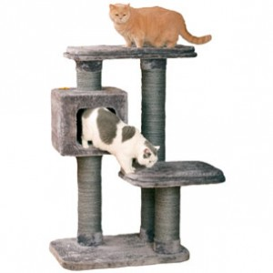 Karlie Ronimispuu CAT1 hall 97x76x127cm